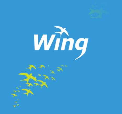 wing_top